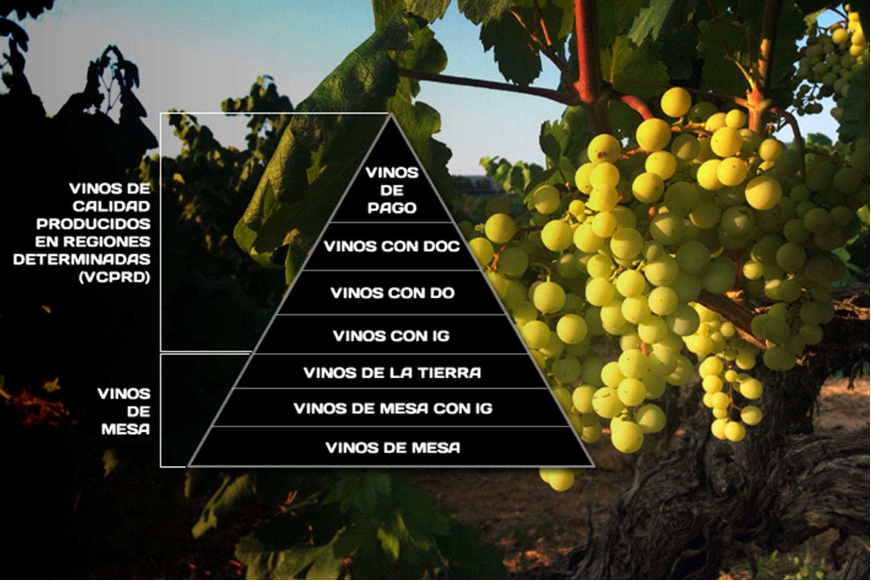 Tabla clasificacion vinos